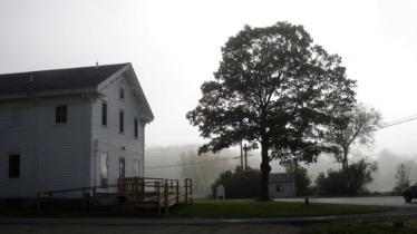 foggy-school