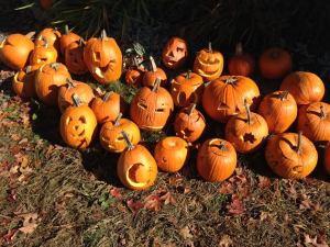 pumpkinsss 2015